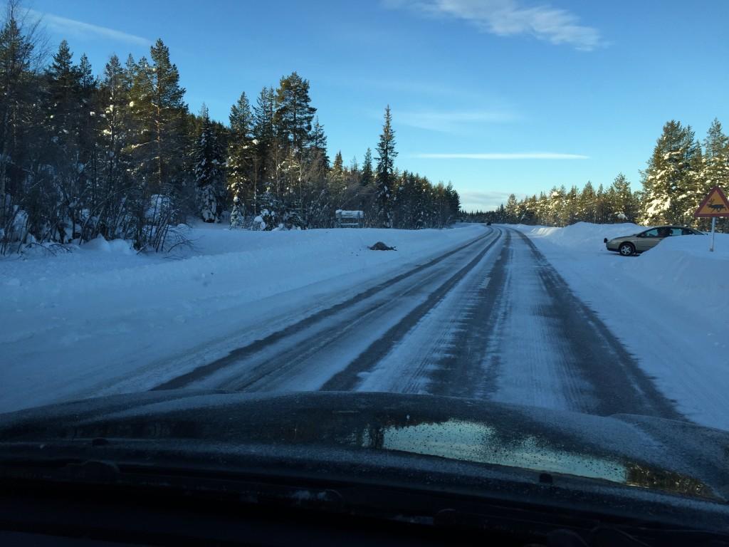 På landevejen står et skilt i højre side der advarer om rener på vejen og i venstre side af vejen ligger netop en ren der er blevet ramt af en bil.