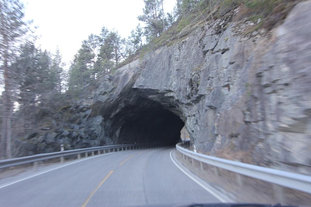 Mon vejen fører direkte ind i bjørnens hule. Så vil jeg håbe den er gået i hi.