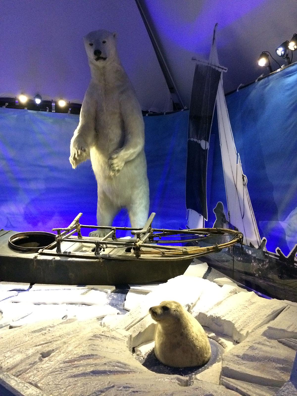 I de store haller er ligeledes udstillet det meste af det ustyr som er blevet anvendt på ekspeditionerne, ligesom spændende udstillinger viser dyrelivet, som var vigtig for at sikre overlevelsen.