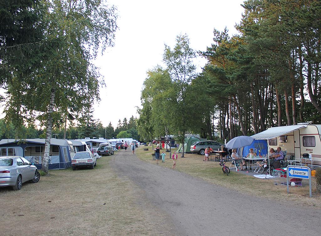 2016-07-Vestbirk-28