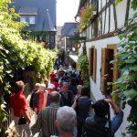 Så nærmer vi os sidste udkald til året traditionelle tur til Rhinen i flammer
