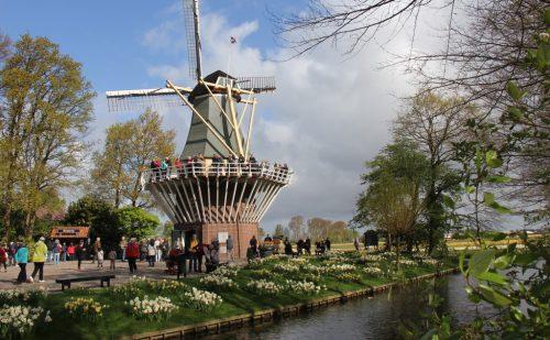 Foråret er kommet – tag en tur til Holland og nyd blomsterne