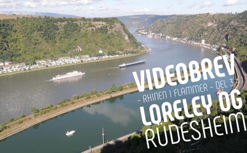 Videobrev – Rhinen i flammer – del 3 – Loreley og Rüdesheim